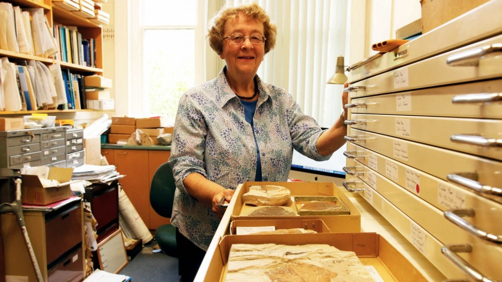 The battle to save one of the planet's best fossil preserves
